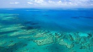 luna-de-miel-australia-gran-barrera-de-coral