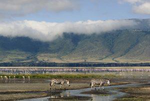 luna-de-miel-tanzania-ngorongoro
