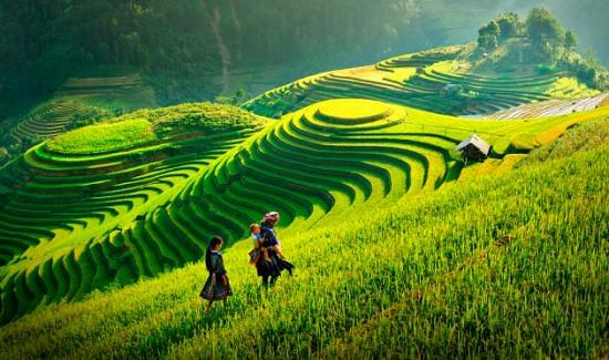 luna-de-miel-vietnam